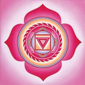 Описание первой чакры - Муладхара или Корневая чакра